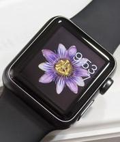 Мобильная новость - Обзор Apple Watch
