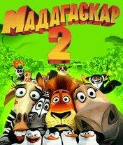 Madagascar 2: Escape to Africa Скачать бесплатно игру Мадагаскар 2: Побег в африку - java игра для мобильного телефона