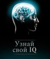Find out your IQ Скачать бесплатно игру Узнай свой IQ - java игра для мобильного телефона