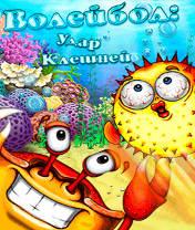 Beach Ball Crab Mayhem Скачать бесплатно игру Волейбол: Удар клешней - java игра для мобильного телефона